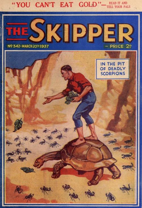 skipper 16